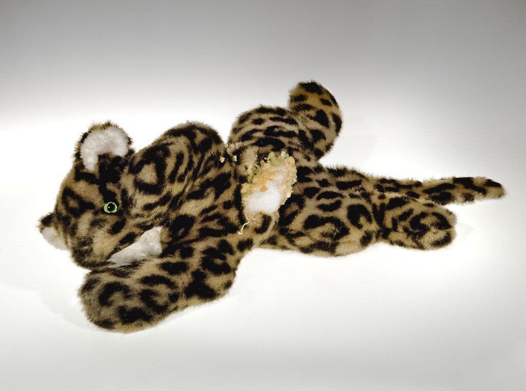 Leopard, 25